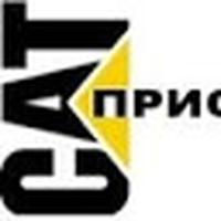 Наталья Панченко