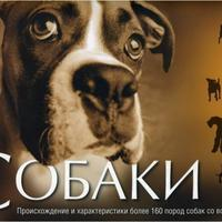Интерн-магазин Мишкина книжка