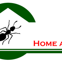 Home Ants