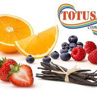 Компания Тотус