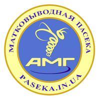 Matkovod AMG