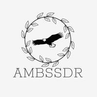 Ambassador Store