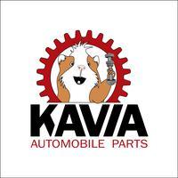 Kavia Trade