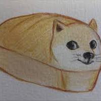Doge Akita